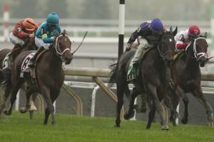 Toronto Ont.October 13, 2013.Woodbine Racetrack.Nearctic Stakes Phil's Dream Jockey Justin Stein.WEG/michael burns photo