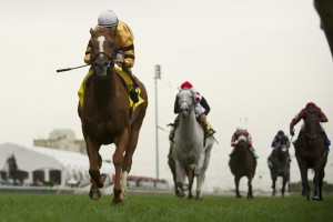 Toronto Ont.Sept15,2013.Woodbine Racetrack.Ricoh Woodbine Mile Wise Dan Jockey John Velazquez.WEG/michael burns photo