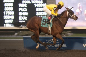 Hillaby - G2 Bessarabian Stakes Mishael Burns Photo