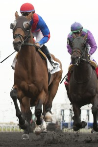 Are You Kidding Me - G2 Eclipse Stakes Michael Burns Photo
