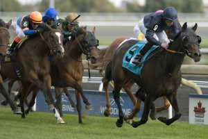 Curvy - G1 E.P.Taylor Stakes michael burns photo