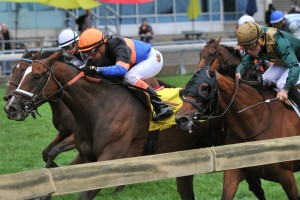 Strut the Course - G2 Canadian Stakes Michael Burns photo