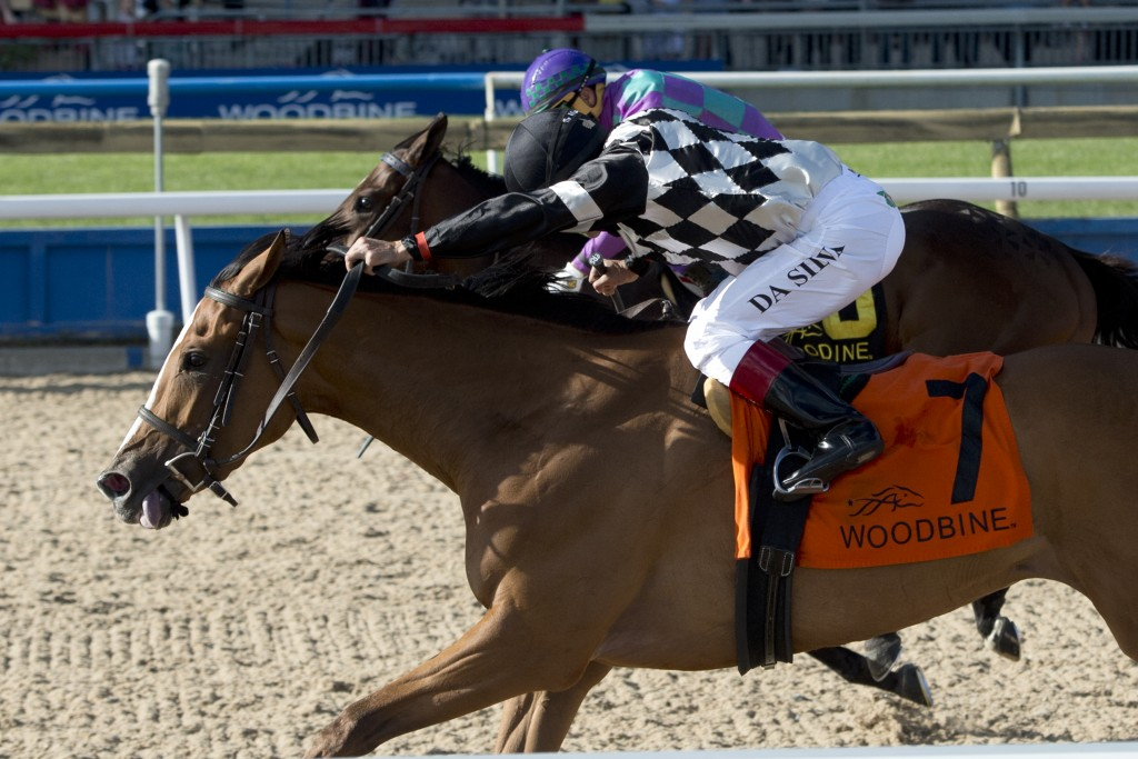 June 12, 2016 - Woodbine Racetrack - Jockey Eurico Da Silva guides Neshama to victory in the 61st running of the $500,000 dollar Woodbine Oaks at Woodbine Racetrack - Nesham is owned by Carnegie Hill Stable,Kingfield Racing Stable,Anderson Farms Ontario Inc.  and John Fielding (JCC Member) Neshama is trained by Catherine Day Phillips (JCC Member) - Michael Burns Photo